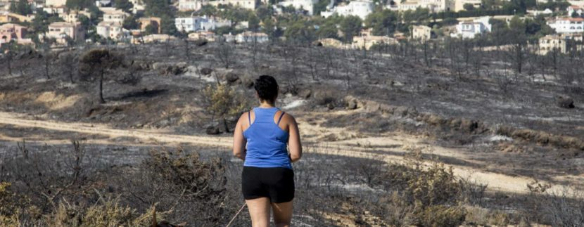 Burnt vegetation in La Granadella, between Jávea and Benitatxell